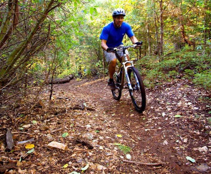 Arnold Rim Trail Work Days