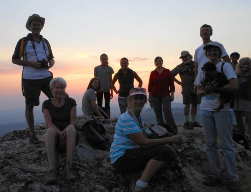 Join us for Spectacular Sunsets on Guided Hikes to Cougar Rock